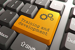 Training Development Keys